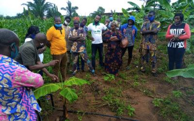 EOA : RENFORCEMENT DE CAPACITÉS DES ACTEURS DU MONDE AGRICOLE ; Formation qualifiante proposée en agriculture biologique